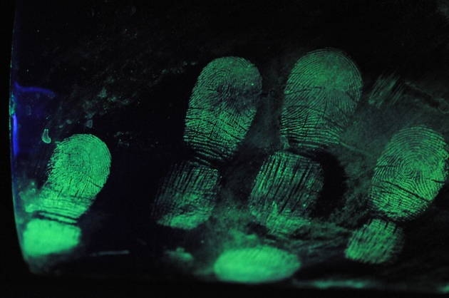 An image dispalying the Fluorescent Fingerprints