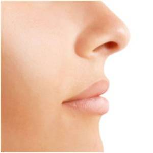 An Image displaying the human nose